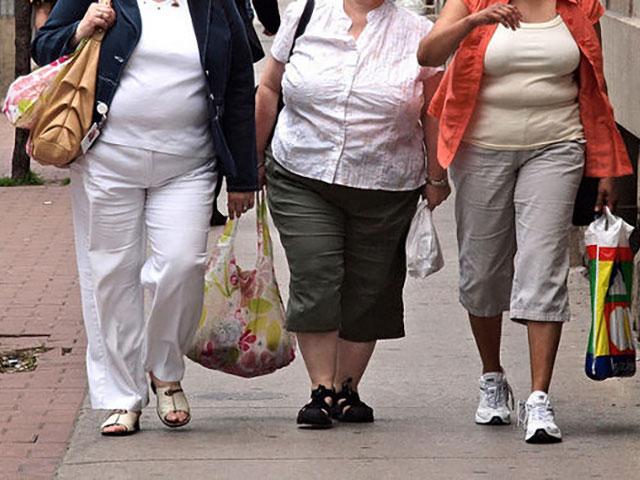 La Obesidad en Cifras